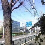 110404_111015.jpg
