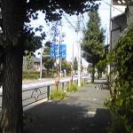 Image602.jpg