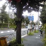 Image695.jpg