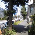 Image752.jpg