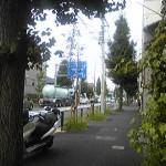 Image766.jpg