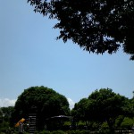 2012-0527-110824064.JPG